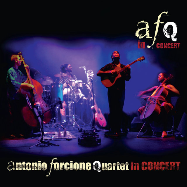 Antonio Forcione Quartet: In Concert