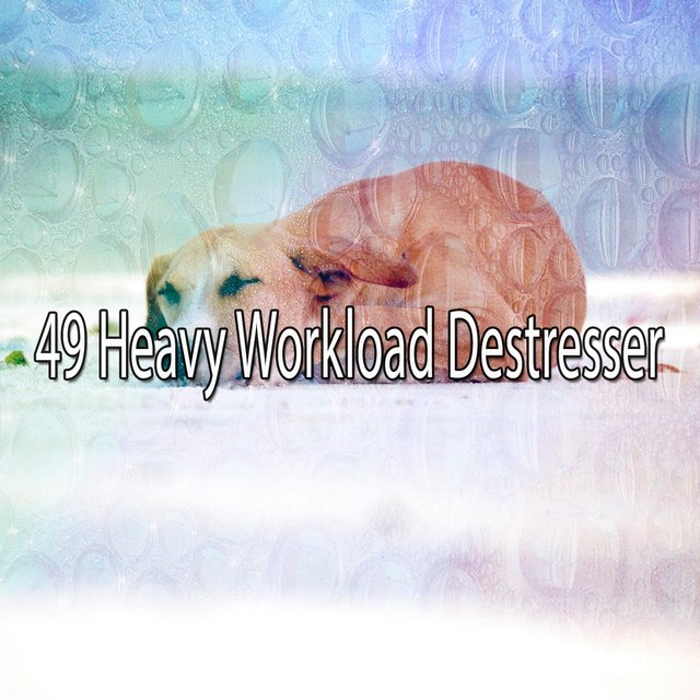 49 Heavy Workload Destresser