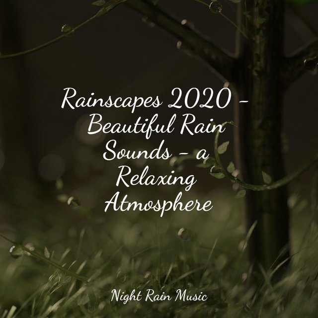 Rainscapes 2020 - Beautiful Rain Sounds - a Relaxing Atmosphere