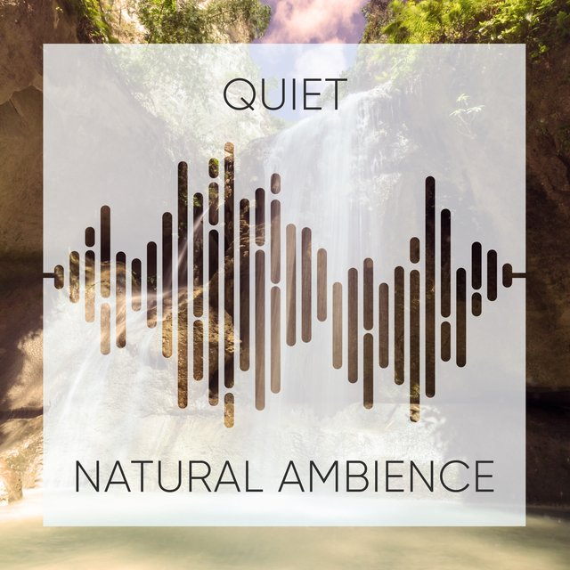 # Quiet Natural Ambience