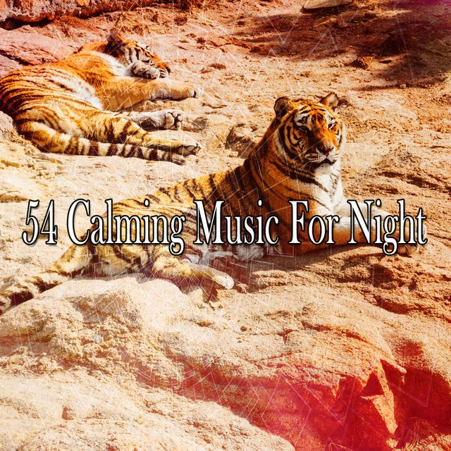 54 Calming Music for Night
