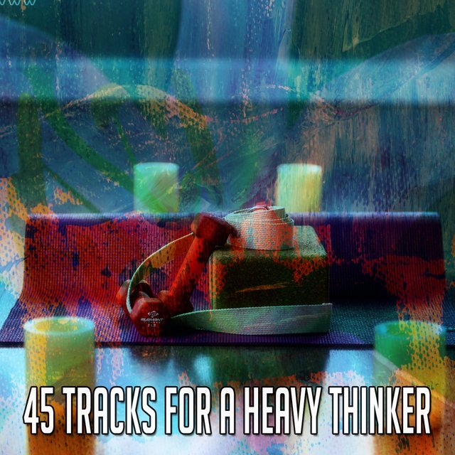 45 Tracks for a Heavy Thinker