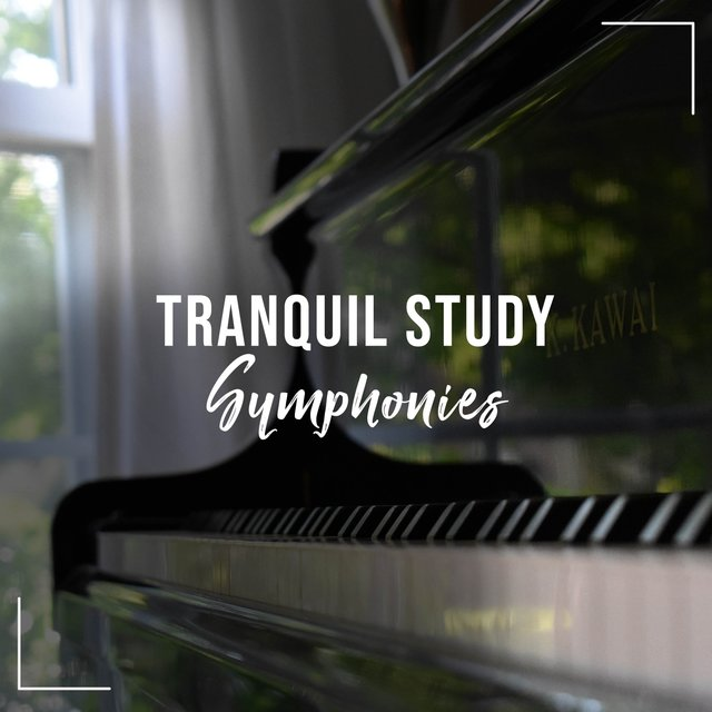 Tranquil Study Therapy Symphonies