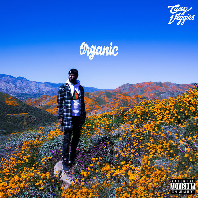Cover art for album Organic by Casey Veggies