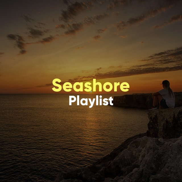 Calming Seashore Playlist