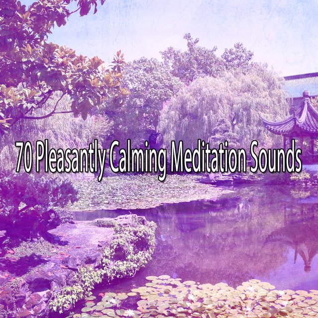 70 Pleasantly Calming Meditation Sounds
