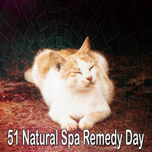 51 Natural Spa Remedy Day