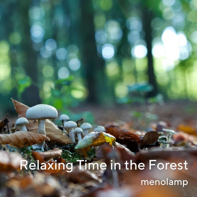 Relaxing Time in the Forest