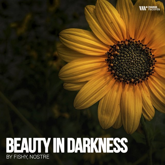 Beauty Darkness