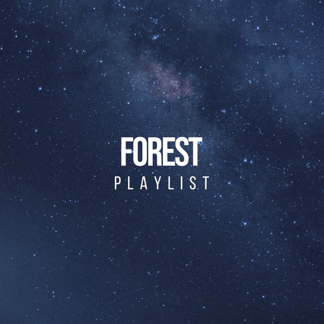 Relaxing Garden Forest Playlist