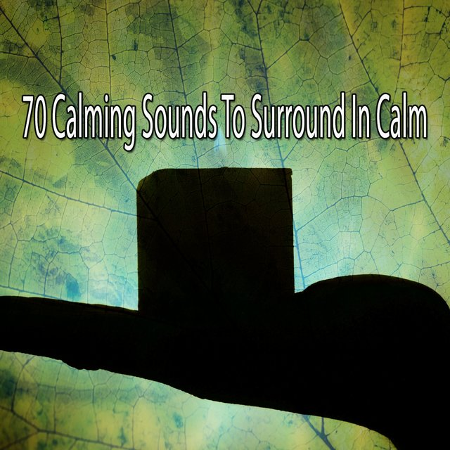 70 Calming Sounds to Surround in Calm
