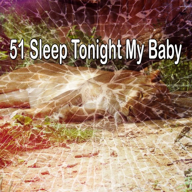 51 Sleep Tonight My Baby