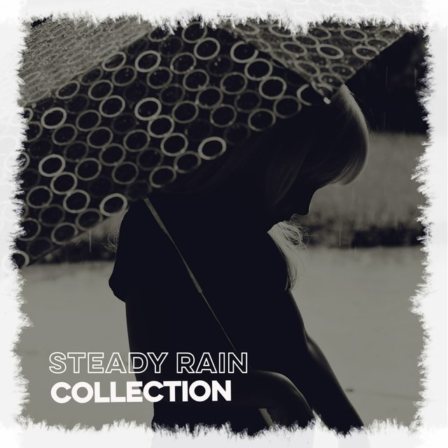 Background Steady Rain & Nature Collection