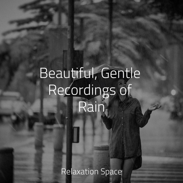 Beautiful, Gentle Recordings of Rain