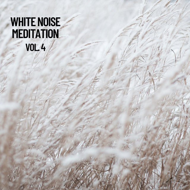 White Noise Meditation Vol. 4, The White Noise Zen & Meditation Sound Lab