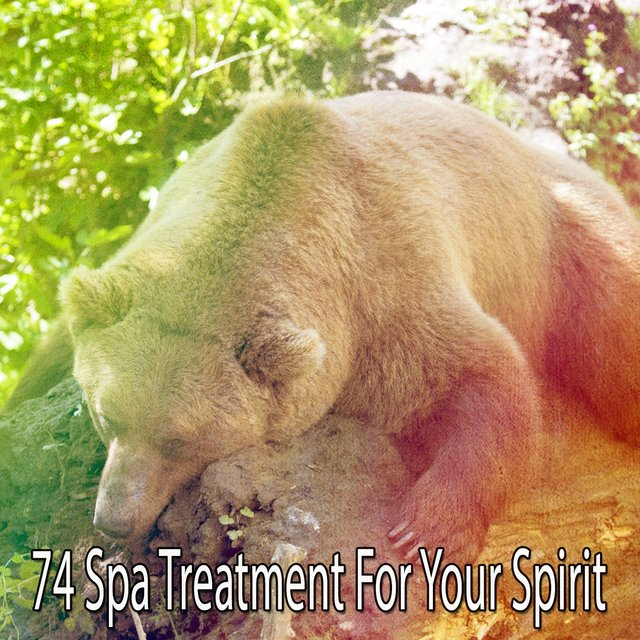 74 Spa Treatment for Your Spirit