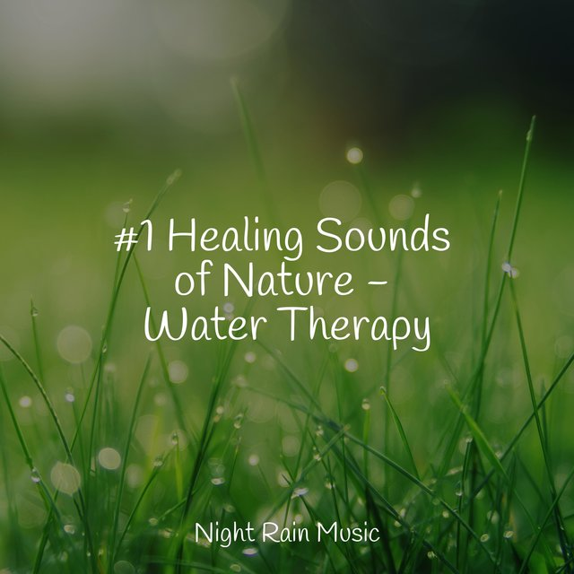 #1 Healing Sounds of Nature - Water Therapy