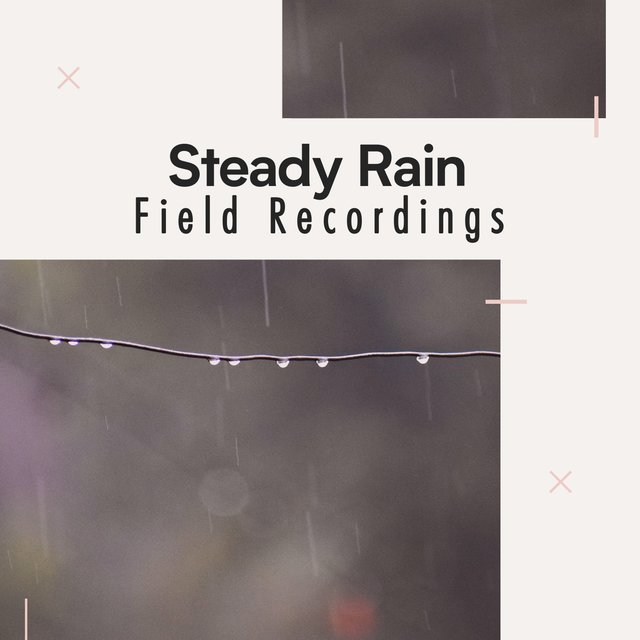 Peaceful Steady Rain & Nature Field Recordings for Staying Motivated at Home