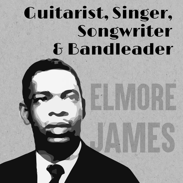 Guitarist, Singer, Songwriter & Bandleader
