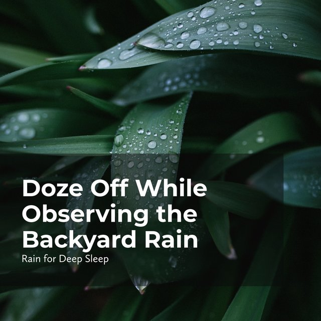 Doze Off While Observing the Backyard Rain