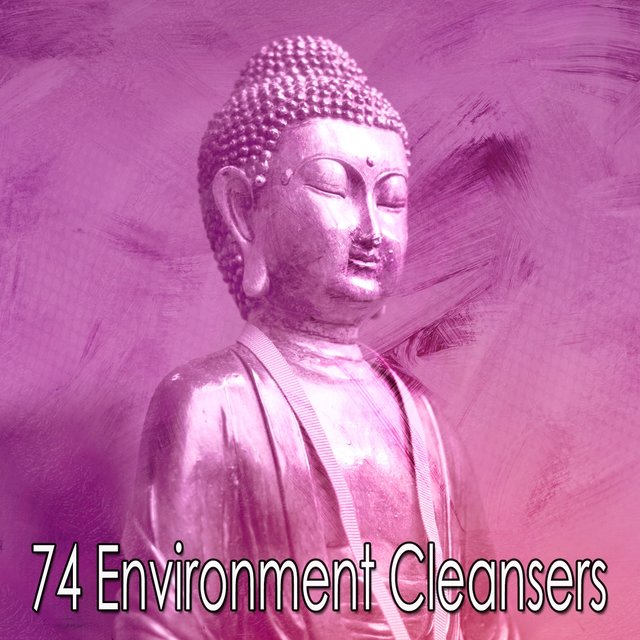 74 Environment Cleansers