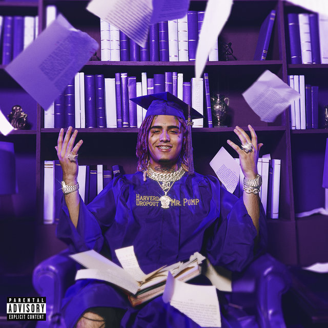 Cover art for album  by Lil Pump
