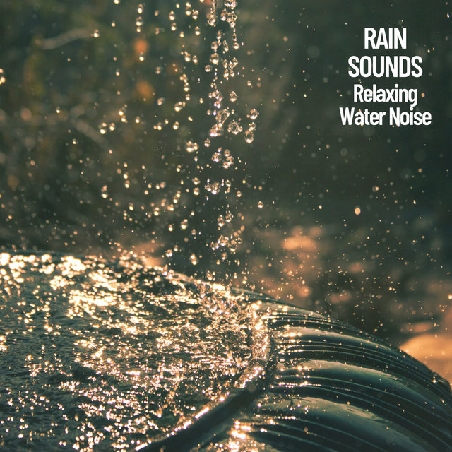 Rain Sounds: Relaxing Water Noise