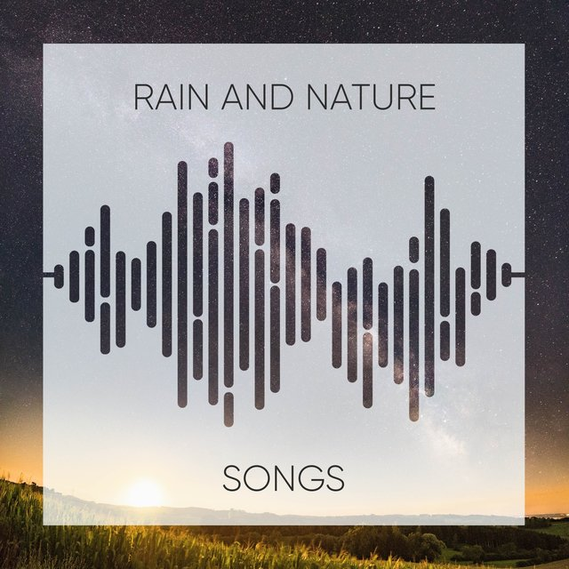 Gentle Ambient Rain and Nature Songs