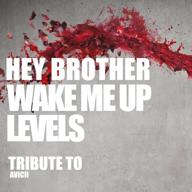 Hey Brother, Wake Me Up, Levels: Tribute to Avicii