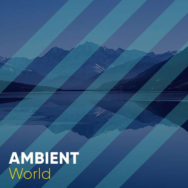 # 1 Album: Ambient World