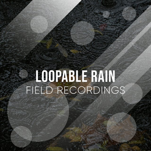 Ambient Loopable Rain & Thunder Field Recordings