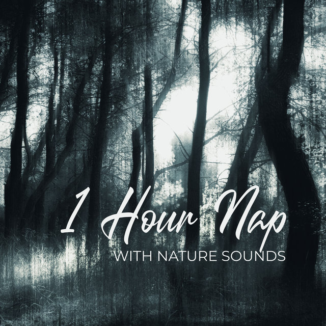 1 Hour Nap with Nature Sounds: Relaxing Music to Sleep