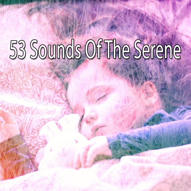 53 Sounds Of The Serene