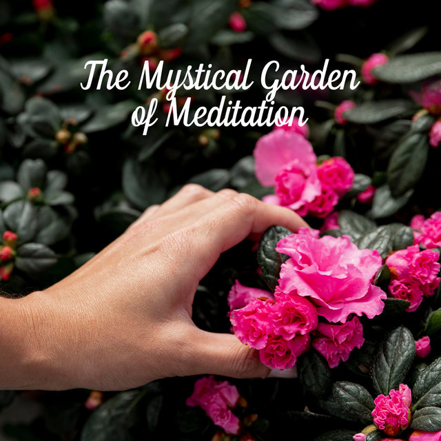 The Mystical Garden of Meditation - Zen Relaxing Music and Nature, Sleep, Meditation & Spa