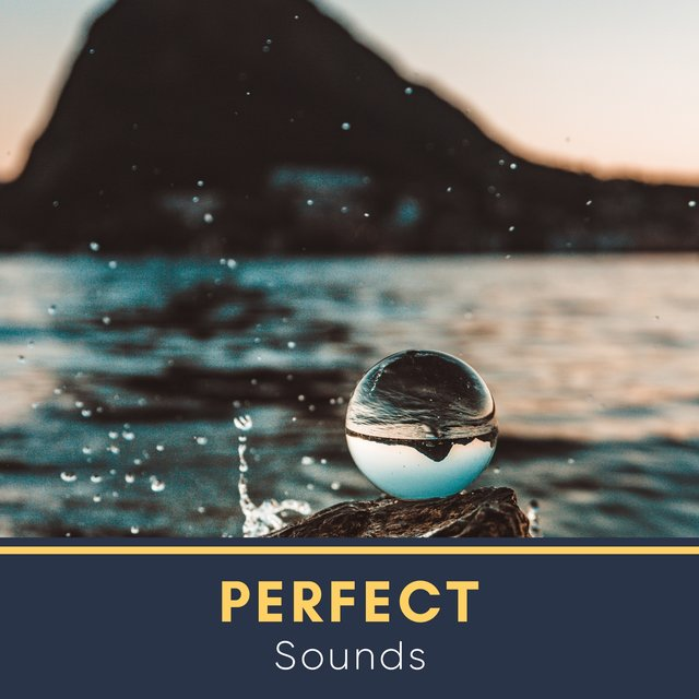 # Perfect Sounds