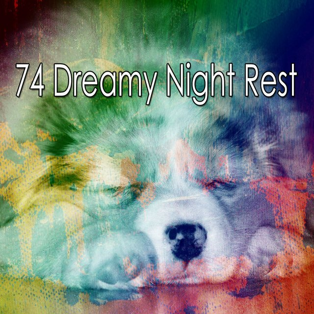 74 Dreamy Night Rest