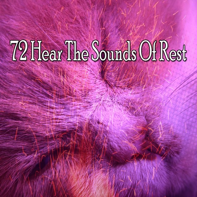 72 Hear the Sounds Of Rest