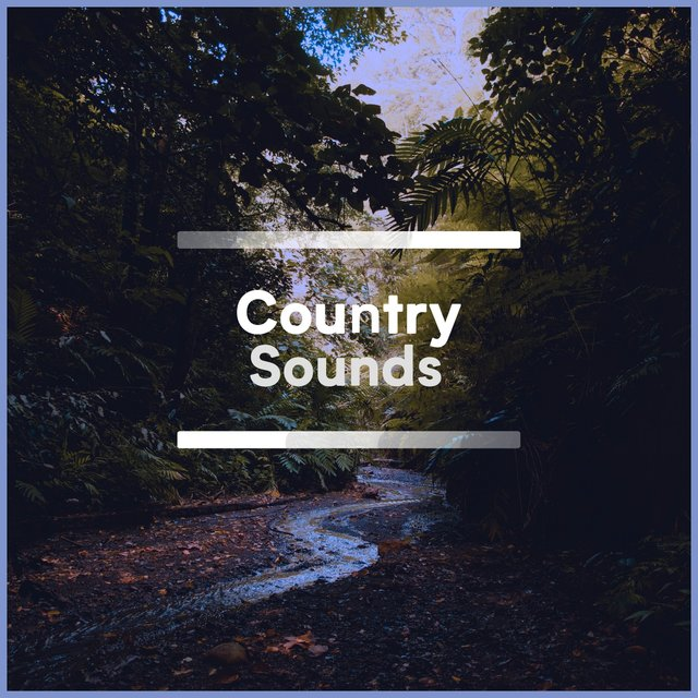 Soothing Rustic Country Sounds