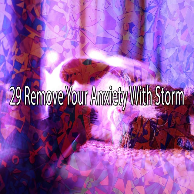29 Remove Your Anxiety with Storm