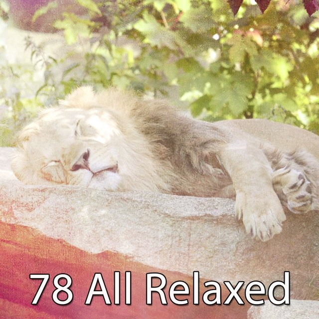 78 All Relaxed