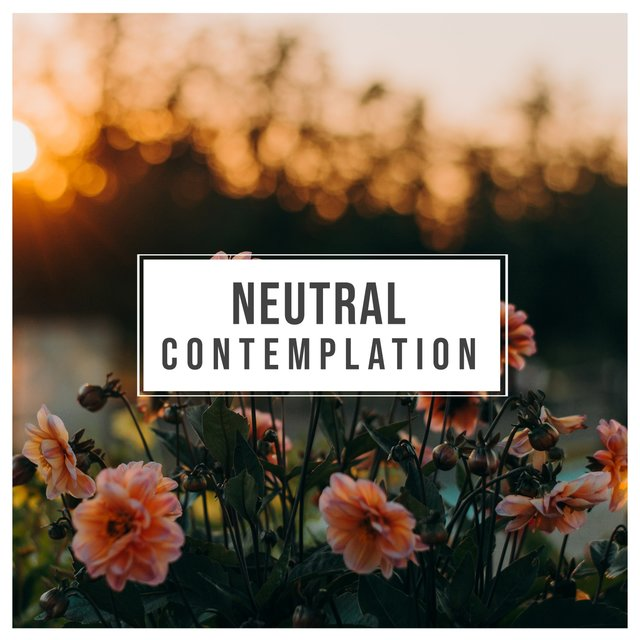 # Neutral Contemplation