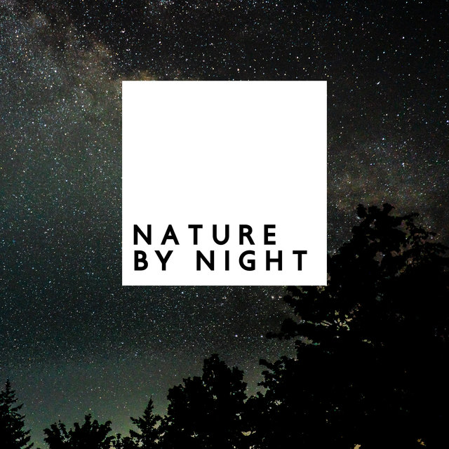 Nature by Night - Relaxing Music, Spiritual Music, Guided Meditation