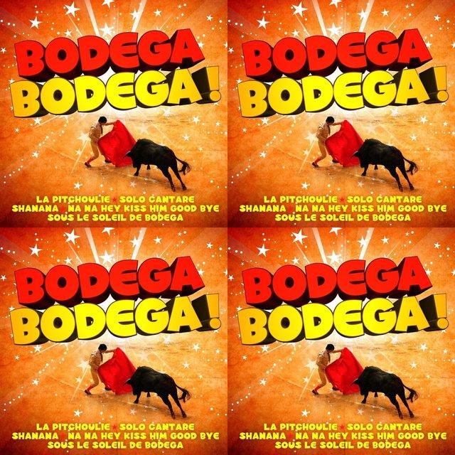 Cover art for album DJ LUDO REMIX BODEGA FERIA  by User