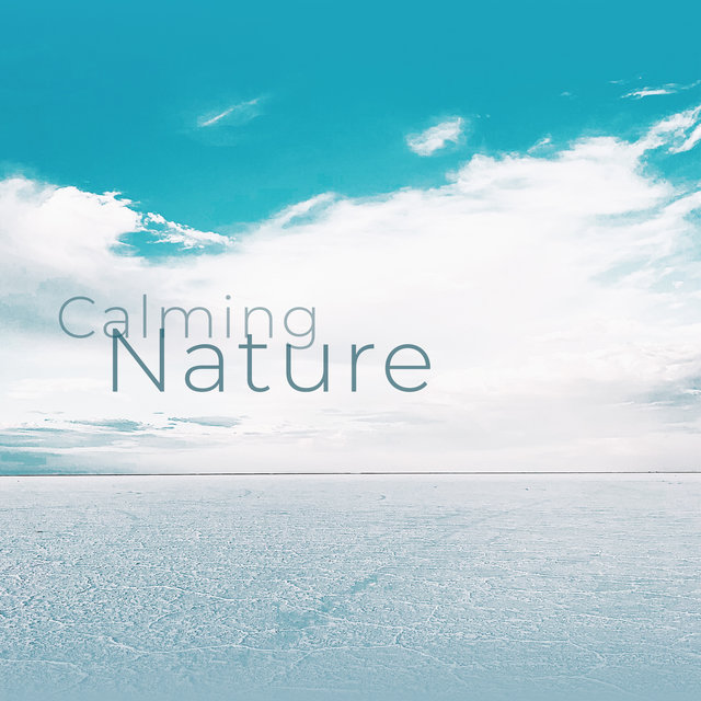 Calming Nature (Best Relaxation Music Compilation of 2019)