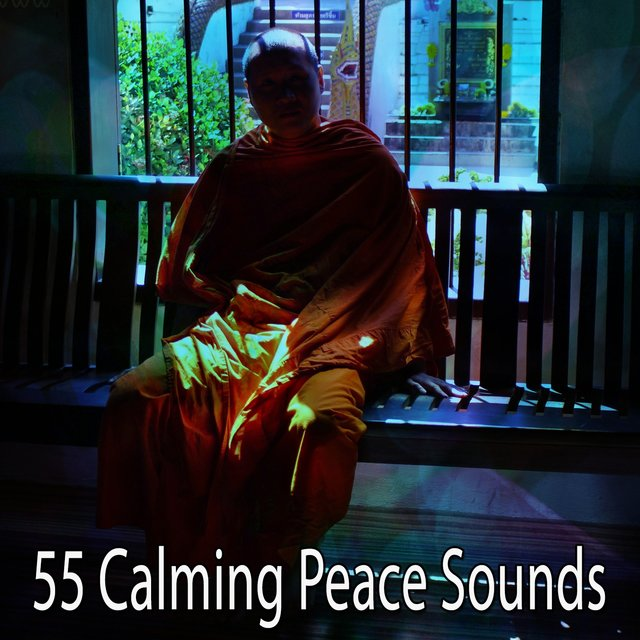 55 Calming Peace Sounds
