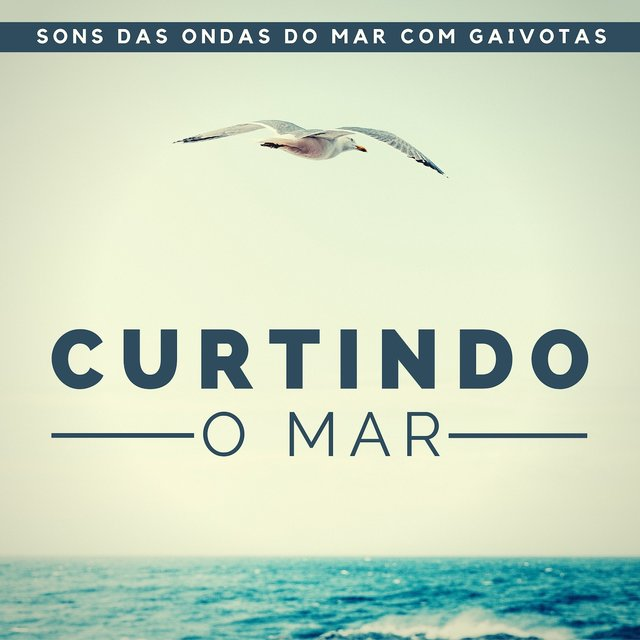 Curtindo o Mar - Atmosfera do Mar para Encontrar a Paz, Sons das Ondas do Mar com Gaivotas