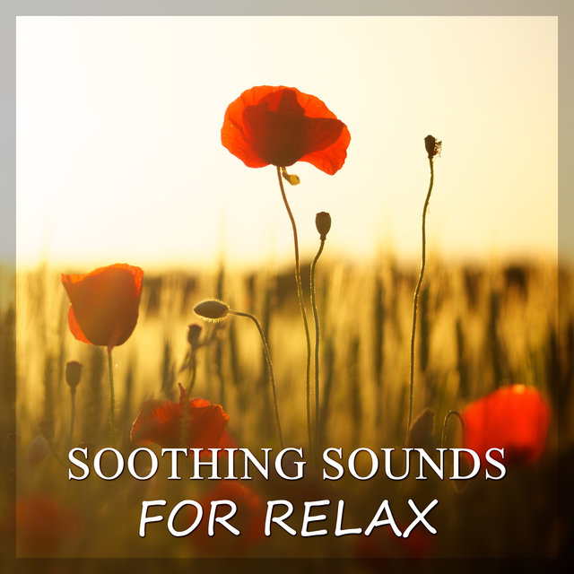 Soothing Sounds for Relax – Sounds of Nature & Ocean Waves for Relaxation, Healing New Age Music, Total Rest