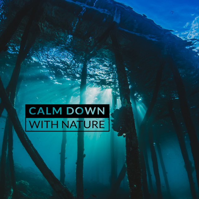 Calm Down with Nature: Music that Relieves Stress, Anxiety and Tension. Relaxes and Restores Peace.