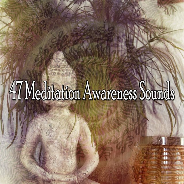 47 Meditation Awareness Sounds