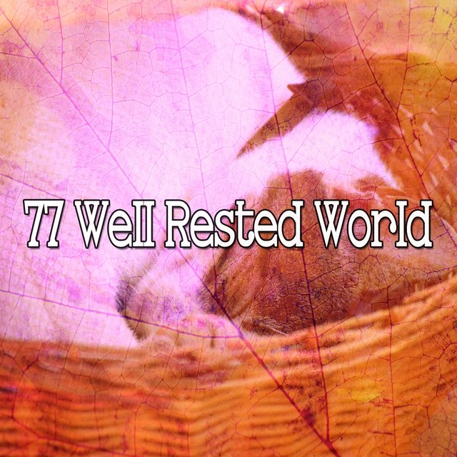 77 Well Rested World